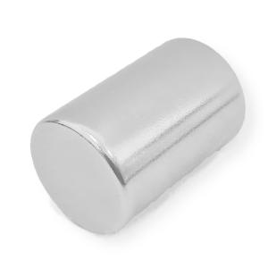 Magnet neodim 22 x 30 mm